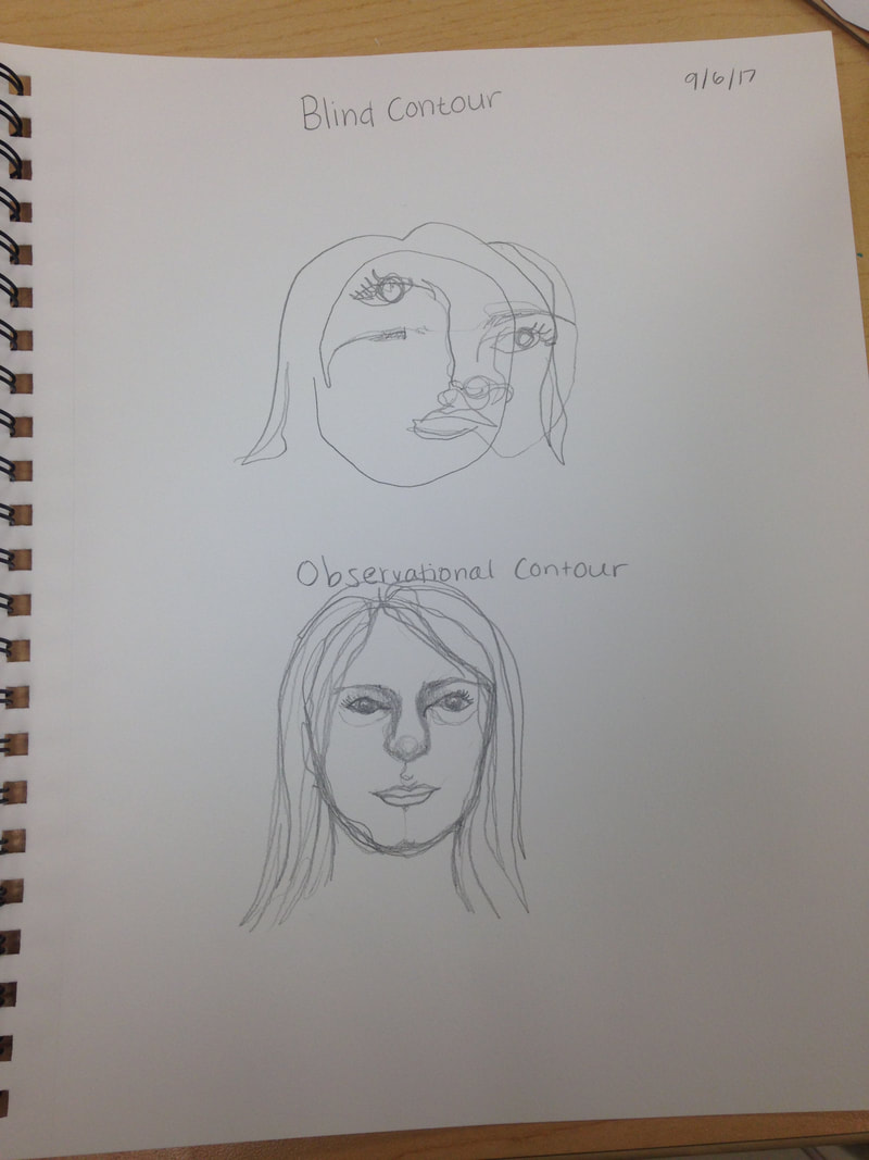 Blind Contour Observational Contour Eyes Noses And Mouths My Site